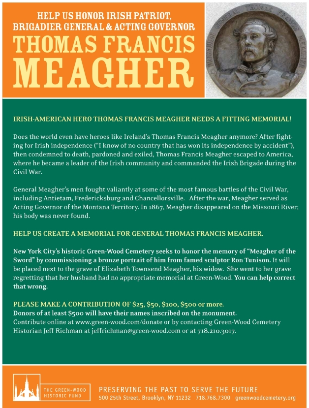 Thomas Francis Meagher Memorial Flyer