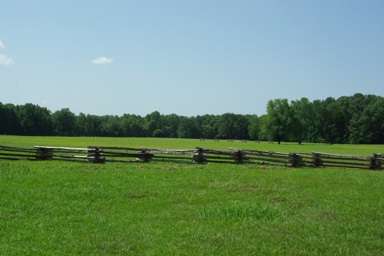 The Sarah Bell Field in Shiloh, across which the 154th (Senior) Tennessee Infantry advanced
