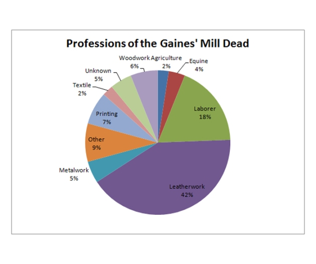 Professions of the Gaines' Mill Dead