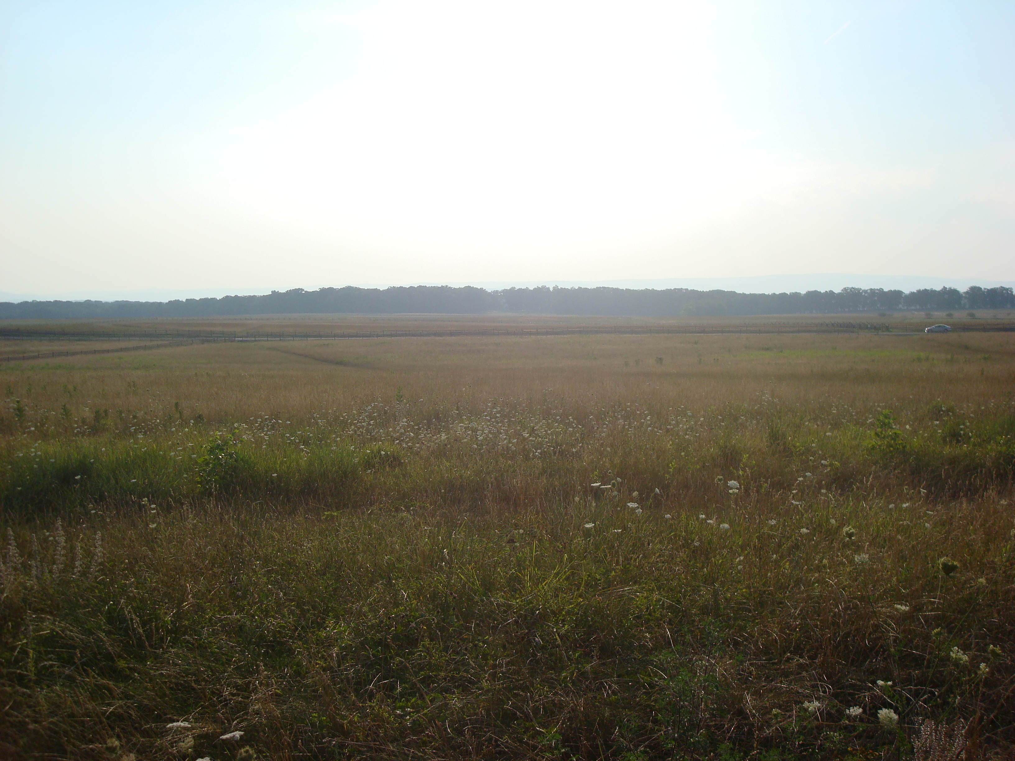 The area of Pickett's Charge, Gettysburg (Wikipedia)