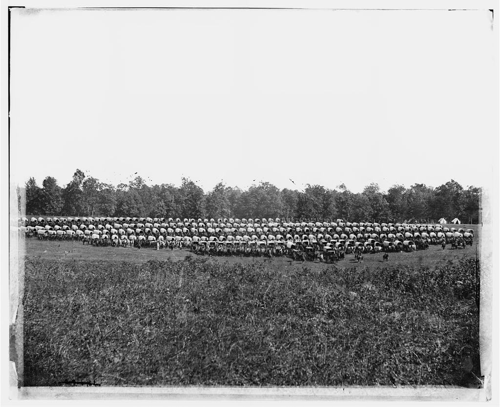Vicinity of Brandy Station, Virginia. Large Wagon Park, May 1864 (Timothy O'Sullivan/Library of Congress)