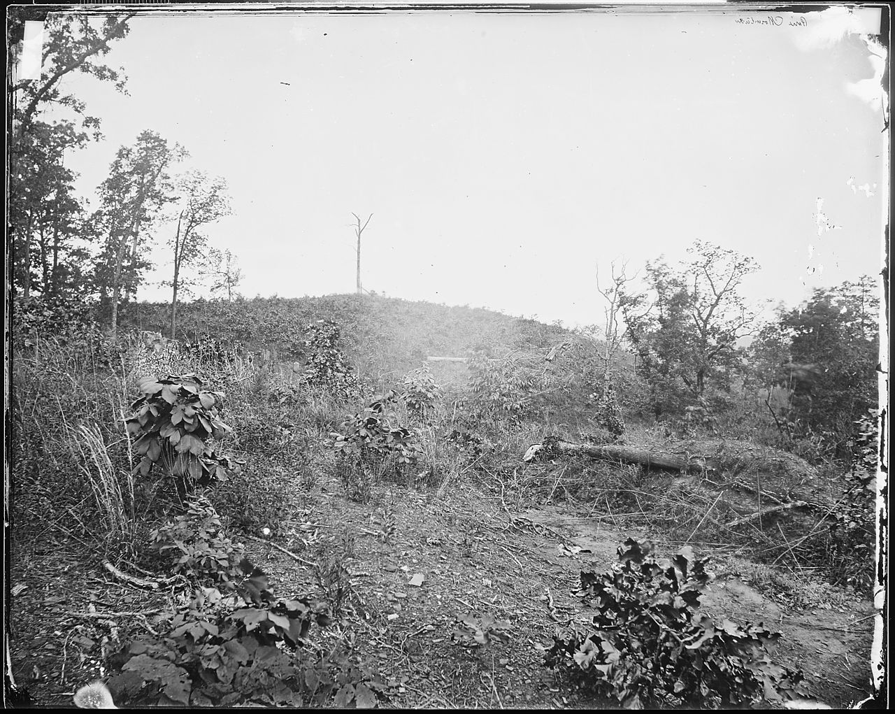 Pine Mountain, Georgia, where Gen. Polk was Killed (Library of Congress)