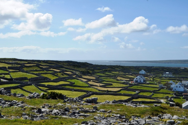 The Landscape of Inisheer, where John Donohoe grew up (Thomas Winter, Flickr Creative Commons)