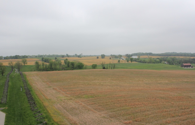 Antietam Battlefield. The Confederates held the Sunken Lane to the left of the image, with the Irish Brigade advancing from right to left across the field. It was in the vicinity of this field that Patrick Clooney died (Damian Shiels)
