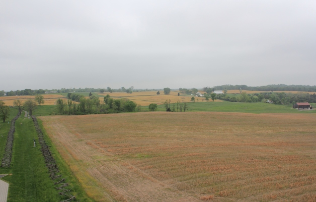 Antietam Battlefield. The Confederates held the Sunken Lane to the left of the image, with the Irish Brigade advancing from right to left across the field. It was in the vicinity of this field that John Conway died (Damian Shiels)