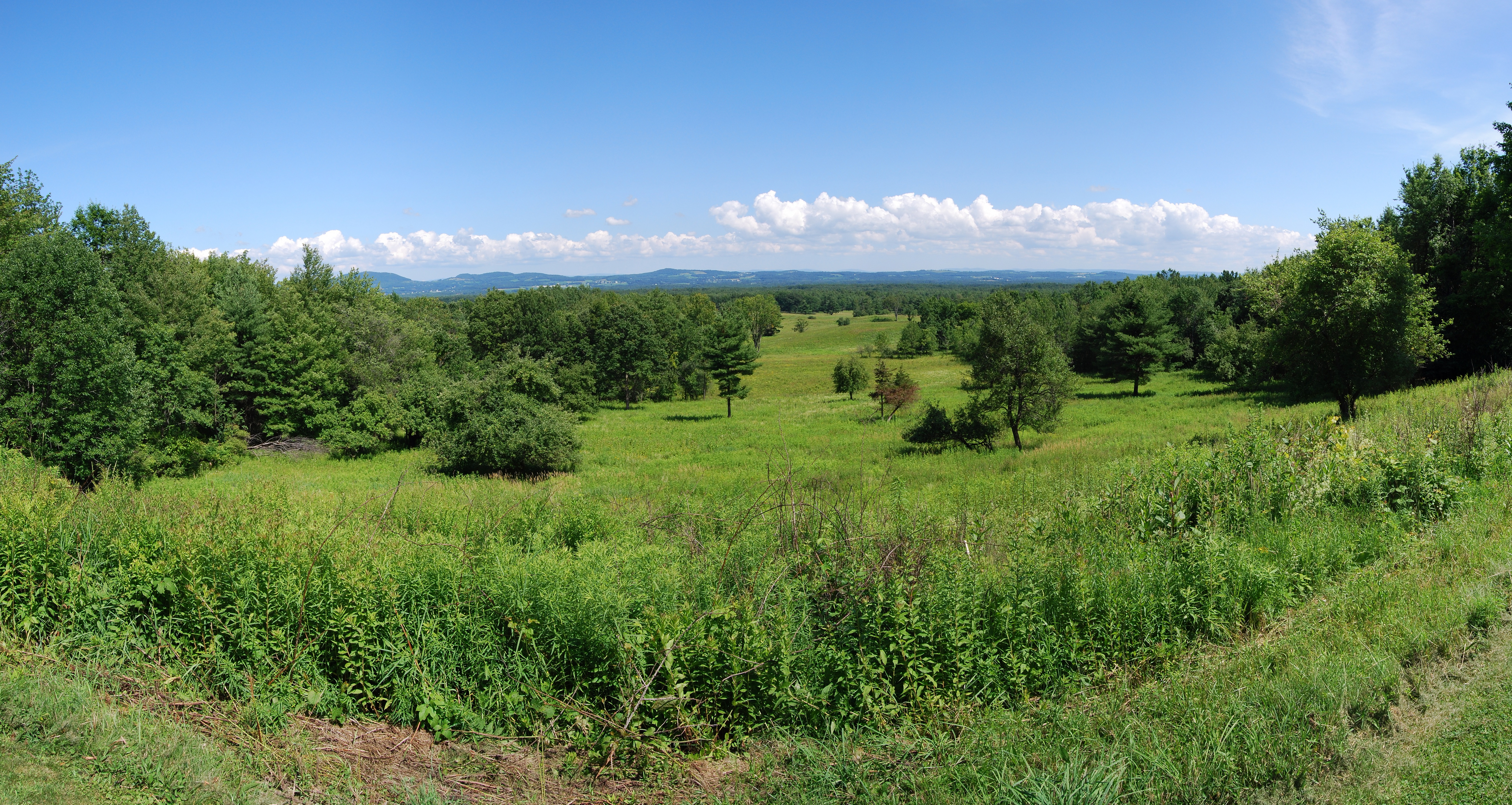 The Saratoga Battlefield (Image: Matt Wade, UpstateNYer)