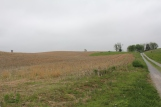 8. View of ground over which the Irish Brigade advanced, with the Roulette Farm Lane representing their right and the Observation Tower on Bloody Lane visible opposite their left.