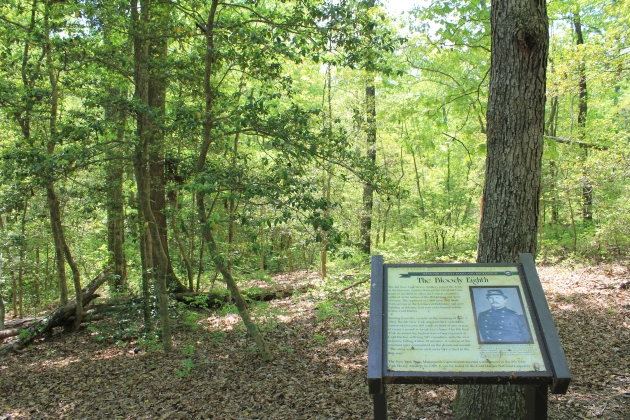 Location where 8th New York Heavy Artillery attacked at Cold Harbor. The 155th New York assaulted the Confederate position advancing to the left of this regiment. Some of the 8th would later bury Hubert McNamara (Damian Shiels)