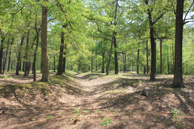 Surviving Confederate earthworks at Cold Harbor (Damian Shiels)