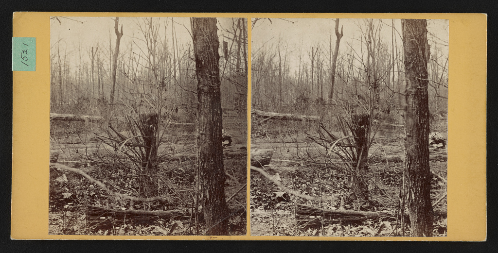 """Spot where Gen. Wadsworth, USA, fell. Shattered tree struck by same shell that killed his horse"" (Library of Congress)"