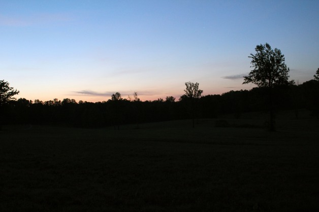The fields over which the Union assault on the Mule Shoe salient took place at Spotsylvania, as dawn breaks on the 150th anniversary of the battle, 12th May 2014 (Damian Shiels)