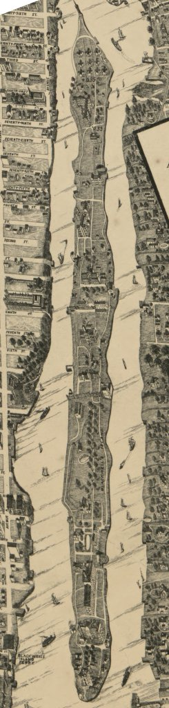 Taylor Map of Blackwell's Island in 1879 (Taylor)