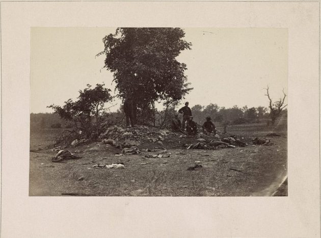 Dead at Antietam (Library of Congress)
