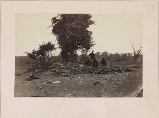 Dead at Antietam (Library of Congress)